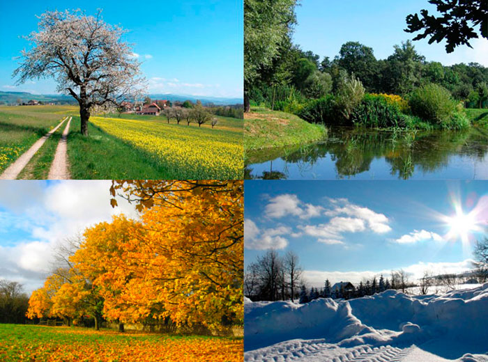 difference between summer and winter seasons